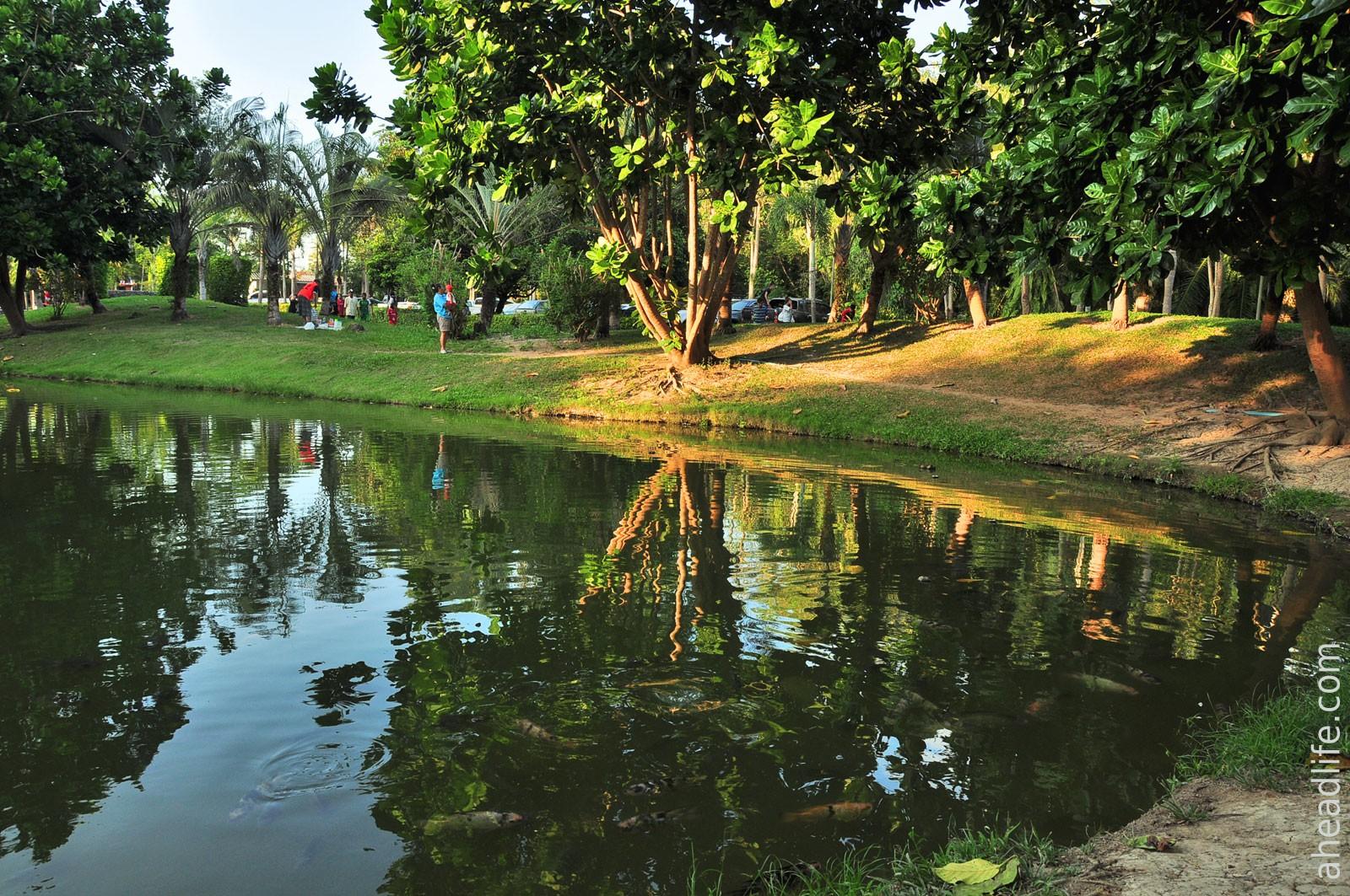 Парк с прудо и рыбками рядом с Sathan Hot Spring