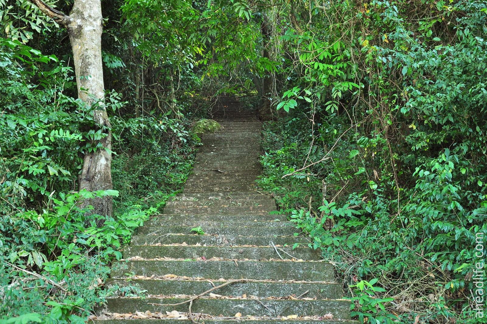 Лестница к заброщенному храму
