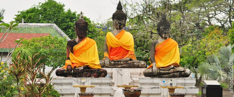 an overview of theravada buddhism An overview of how buddhism originated, its early schools, and the eventual emergence of theravada what theravada buddhism.